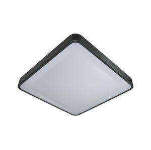 BOWI LED Stropní svítidlo se senzorem WILTON LED/24W/230V antracit